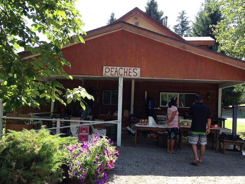 Peach farm - Kelowna, BC